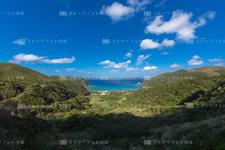 慶良間諸島/渡嘉敷島 18C8292