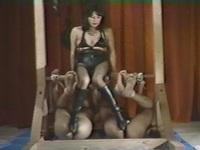 더 게임 노예 2 마리의 성 수 수상