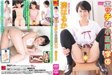 Naughty little devil school Haruka Minato MC-027