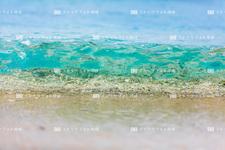 沖縄本島/大宜味のビーチ 218C8338